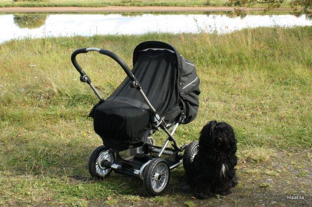 Emmaljunga-lastenvaunut
