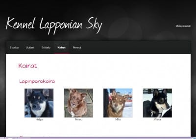Kennel Lapponian Sky
